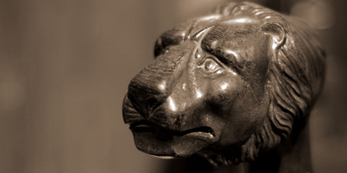 lionbanner